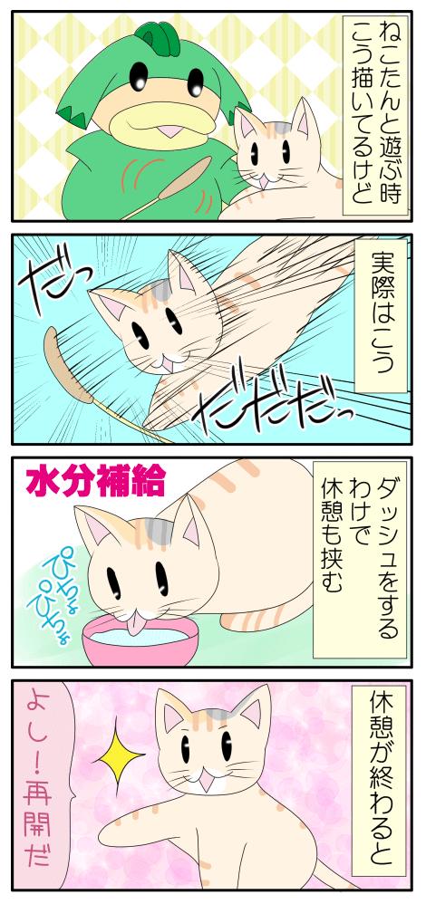 猫と楽しく遊ぶ漫画