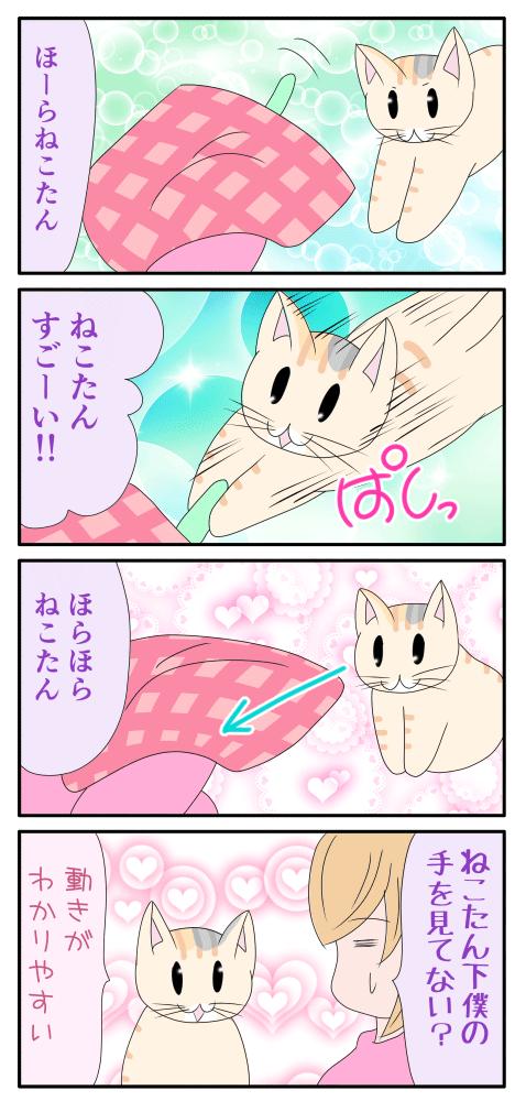 猫じゃらしマスターの猫の漫画